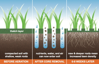 Lawn Care Stillwater, MN Core Aeration