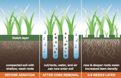 Lawn Care Stillwater, MN Core Aeration